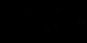 espiral fondo transparente