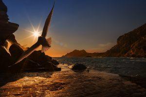 sea-pixabay